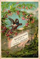 0063 Liebig S 63, Complete Set Of  6 Chromo Litho Cards  C1875, Rare, Printer Dangivillé Paris - BIRDS, NO Borderlines - Liebig