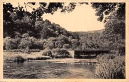 NEUPONT S/LESSE - Le Pont Du Ry Des Glands - Wellin