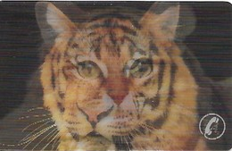 USA: Bayliss Creative Telecom. - TeleCard World '95 West -  Tiger/Cat Changing Front Pictures. Mint - Vereinigte Staaten