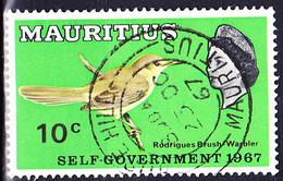 Mauritius - Rodriguez-Rohrsänger (Acrocephalus Mascarensis) (MiNr: 295) 1967 - Gest Used Obl - Mauritius (1968-...)