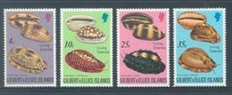 GILBERT ELLICE -  MNH/**- 1976 - LIVING COWRIES SHELLS - Yv 236-239 -  Lot 18281 - Îles Gilbert Et Ellice (...-1979)