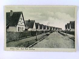 Labiau Ostpr., Erich-Koch-Siedlung, Polessk, Russland, AK, Ungelaufen, Ca. 1930 - Ansichtskarten