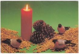 Hyvää Joulua Ja Onnellista Uutta Vuotta - Merry Christmas And Happy New Year  - (Finland/Suomi) - 1989 - Kerstmis