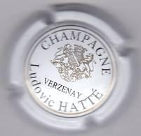 HATTE LUDOVIC N°6 - Champagne