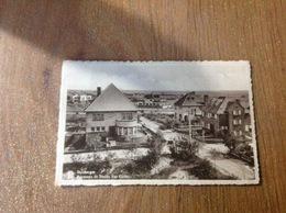 Duinbergen  Panorama - Cartes Postales