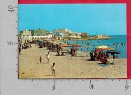 CARTOLINA VG ITALIA - TORCHIAROLO (BR) - Lido San Gennaro - 10 X 15 - ANN. 1978 - Brindisi