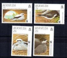 Bermuda - 2001 - Endangered Species/Bird Conservation - MNH - Bermudes