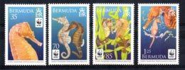 Bermuda - 2010 - Endangered Species/Seahorses - MNH - Bermudes