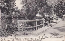 [45] Loiret > Olivet  Les Bords Du Loiret - Autres Communes