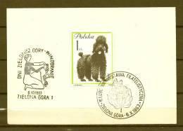 POLSKA, 06/10/1963 Dni Zielonej Gory -  ZIELONA GORA  (GA3574) - Wein & Alkohol