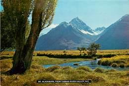 CPSM Nouvelle Zélande-Mt Blackburn,from Tasman River Valley                                 L2722 - Nouvelle-Zélande