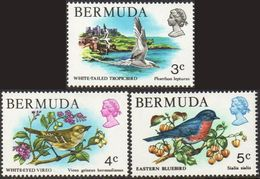 BERMUDA 1978 Birds (3 Values) MNH - Bermuda