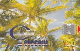 Cape Verde - Palm Trees - Coqueiros II - Cap Vert