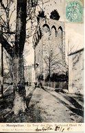 34. Montpellier. La Tour Des Pins, Boulevard Henri IV - Montpellier
