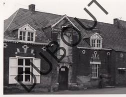 Meerhout Molen/Moulin Foto E63 - Meerhout