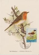 Saint Marin Carte Maximum 1960 Oiseau Traquet 488 - Lettres & Documents