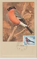 Suède Carte Maximum 1970 Oiseau Bouvreuil 675 - Maximum Cards & Covers