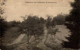CPA Collection Des Châteaux De Beaucourt - Beaucourt