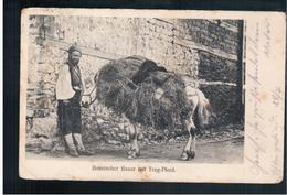 BOSNIA Boschnischer Bauer Mit Trag- Pferd Ca 1915 OLD POSTCARD 2 Scans - Bosnia And Herzegovina