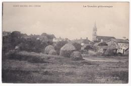 CPA - 85 - VENDEE - SAINT MICHEL EN L'HERM  La Vendée Pittoresque - Saint Michel En L'Herm