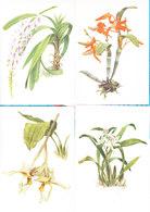 Soviet Union  Orchids Serie Van 16 - Moscow 1988 - B. Plantes Fleuries & Fleurs