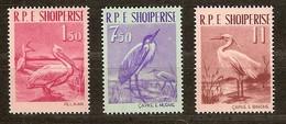 Albanie Albania 1961 Yvertn° 552-554 *** MNH Cote 25,00 Euro Faune Oiseaux Vogels Birds - Albanie