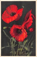 5 CP Fleurs Du Photographe Suisse THOR E GYGER Années 1935-40 - Cartes Postales