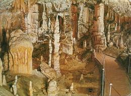 Postojnska Jama (Slovenia) La Grotta, The Grotto, Die Grotte - Slovenia