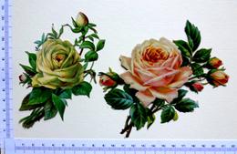 2 CHROMOS DECOUPIS....  FLEURS.....ROSES - Fleurs