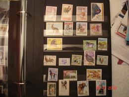 BEL ALBUM CONTENANT COLLECTION DE TIMBRES NEUFS ET OBLITERES SUR LES ANIMAUX ( Ferme Et Foret) - Stamps