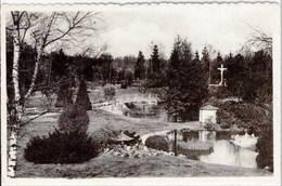 "HOOGBOOM - Notre-Dame De Grâce - Maison De Repos ""Welvaart"" - Panorama - Oblitération De 1962 - Boom"