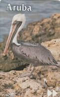 Aruba - Pelican - 511B - Aruba