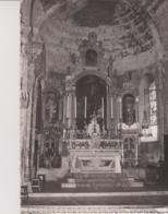 04 - ALPES DE HAUTE PROVENCE -CPM -  SISTERON - INTERIEUR DE L'EGLISE - Sisteron