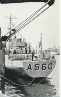Boot - Bateau - Ship - Schiff - Force Navale Belge - Belgische Zeemacht - Godetia A 960 - Guerre