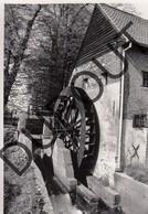 Overpelt Molen/Moulin Foto E109 - Overpelt