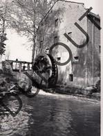 Overpelt Molen/Moulin Foto E111 - Overpelt