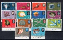 Barbados / Barbade 1965-68 Ordinaria Fauna (Yvert.243a/256a) **MNH /VF - Barbados (...-1966)