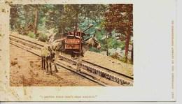 11272 - U. S.A.   ANES Et MULETS - I HELPED BUILD PIKE'S PEAK RAILWAY  - Race Prisée  Des Chercheurs D'Or & Du Train - Donkeys