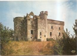 Le Chateau De Flamarens - Autres Communes