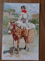 Italy / Lavannara (ezel, Ane, Donkey) --> Unwritten - Anes