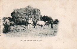 85Ct   Agriculteurs La Fenaison Dans Le Béarn Attelage Boeufs - Cultures