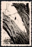 B9985 - TOP Foto - Abstrakt Abstract - ??????? - Fotografie