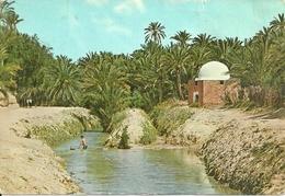 Tozeur (Tunisia) Rivière Et Marabout Dans L'Oasis, River And Marabout In The Oasis - Tunisia