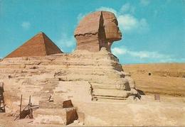 Giza (Egypt) The Great Sphinx And Cheope Pyramid, Sfinge E Piramide Di Cheope - Gizeh
