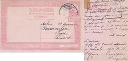 Turchia Turkey Ottomano Ottoman 1910, Carte Postale , Postal Card Value 20P , From Istanbul To Paris France - 1858-1921 Ottoman Empire