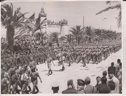 TUNIS VICTORY PARADE  FRENCH TROOPS     FOTO DE PRESSE Brian L Davis Archive - Guerra, Militari