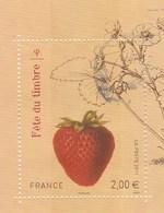 FRANCE 2011 ISSU DU BLOC FETE DU TIMBRE FRAISIER OBLITERE - YT 4535    - - France
