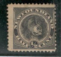 10393 - NEWFOUNDLAND - Timbres