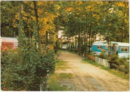 Hoogerheide - Recreatiecentrum 'Familyland', Groene Papagaai 19 - Bungalow/Caravanpark - Nederland