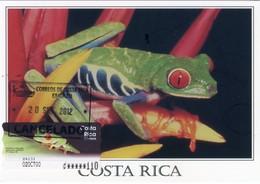 COSTA RICA - Carte Maximum Card - ATM - Rana Calzonuda, Red Eye Leaf Frog, Grenouille (Agalychinis Callidryas) - Escazú - Costa Rica